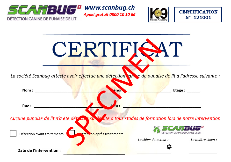 Certificat d'intervention Scanbug